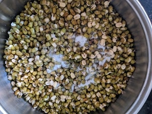 Sprouted Moong Beans with salt