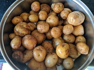 Boiled baby potatoes
