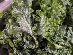 Seasoning the kale