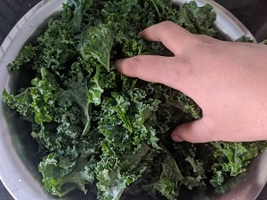 Massaging the kale with seasoning